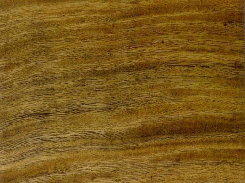 Madera de Elondo-Tali